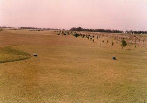 golf 12-13_opt