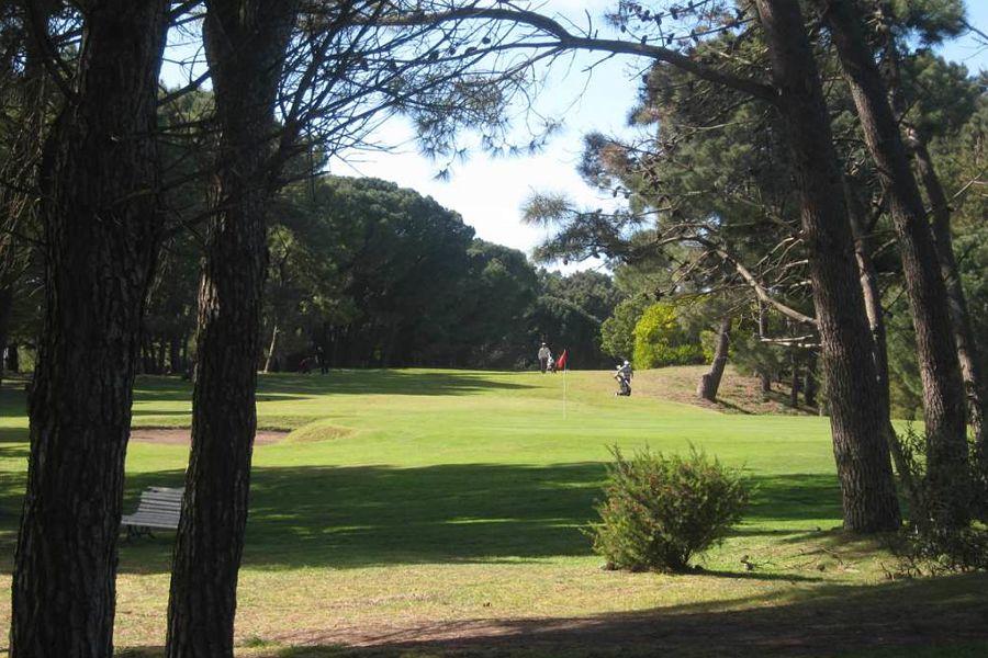 golf 20-21_opt