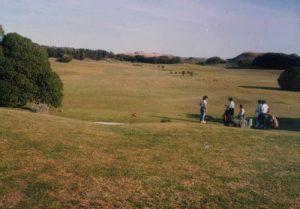 golf 5-06_opt